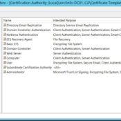 Microsoft AD CA üzerinden Otomatik Sertifika Yenileme ve IIS Otomatik Sertifika Rebind