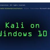 Windows 10 Pro Üzerinde Kali Linux Kurulumu