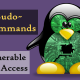 Linux'ta Zafiyet  SUDO!
