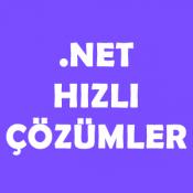 .NET Basit Çözümler – Bir Dizindeki Tüm Dosyaları ve Alt Dizinlerin Sayısını Almak