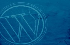Binlerce WordPress Sitesi Hacklendi!