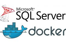 Docker üzerinde SQL Server Kurulumu, Yedek Alma, Yükleme Operasyonları