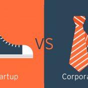 Yazılım Geliştirmenlerinin Ölümcül İkilemi : Küçük Bir Girişim Firmasında mı Çalışmak Yoksa Kurumsal bir Firmada mı ?