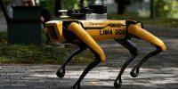 COVID-19 Salgını Boyunca Robotlar Singapur'da Devriye Gezecek