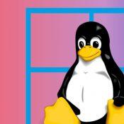 Microsoft Linux GUI Uygulamalarını Windows'a Getiriyor