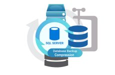 SQL Server'da Backup Stratejileri-2 Full Backup ve  Backup Compression