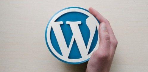 WordPress 5.5 Beklenen Yeni Özellikleriyle Beraber Geldi