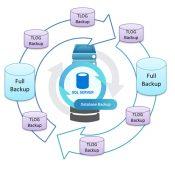 SQL Server'da Backup Stratejileri-4 Transaction Log Backup