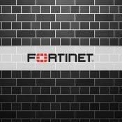 Fortinet VPN'de Güvenlik Açığı