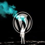 WordPress Kullanan Web Sayfalarında Güvenlik Açığı